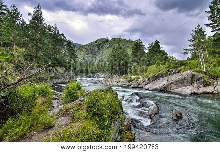 Picturesque summer mountain landscape with fast seething river among the rocky shores covered with forests and dramatic sky - the Altai Mountains Russia.