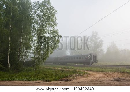 Railway, Train, Forest And Mist Early In A  Morning