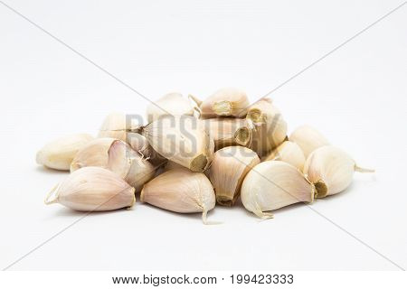 Fresh root garlic on white background object isolated
