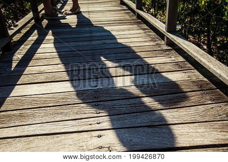 Shadow image of a lover on wooden bridge in the mangrove forest.