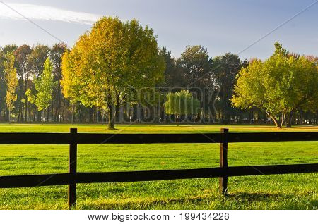 Green grass and colorful trees surrounded by a wooden fence on a golf course at sunny morning in Belgrade, Serbia