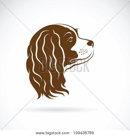Vector of Cavalier King Charles Spaniel dog on white background. Pet Animal. Dog head.