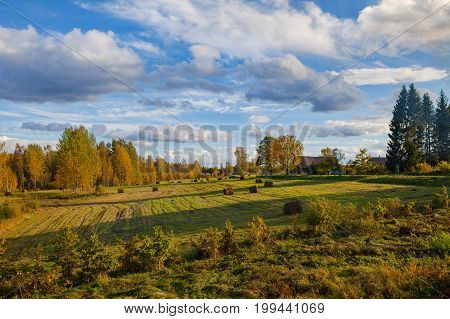 Beautiful countryside landscape. Round straw bales in harvested meadow and blue sky with clouds