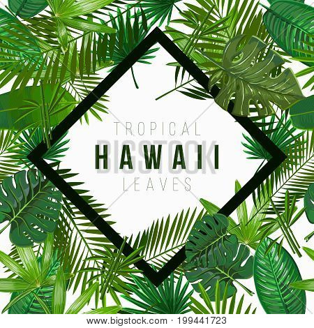 Vector Seamless pattern with tropical leaves on white background.Nature illustration the inscription of Hawaii in a rhombus.