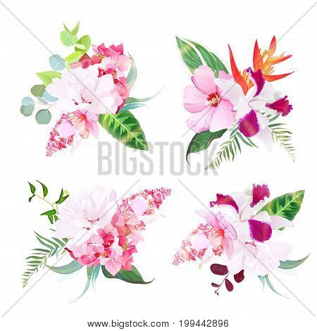 Delicate tropical floral bouquets arranged from white layered hibiscus, medinilla, orchid, hydrangea. Singapore flowers vector design set. All elements are isolated and editable.