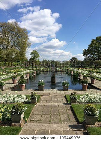 15th June 2017. The gardens at Kensington Palace home of the Late Diana Princess of Wales . Planted with white flowers to commemorate 20yrs this month, since her tragic death.