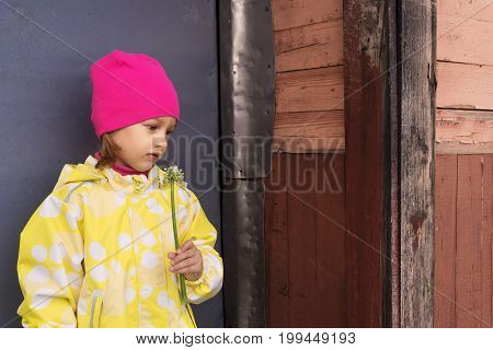 Portrait of a little sadgirl in a yellow raincoat and a pink hat with a plant in her hand. She is standing in frount of a grey metal door in a village.