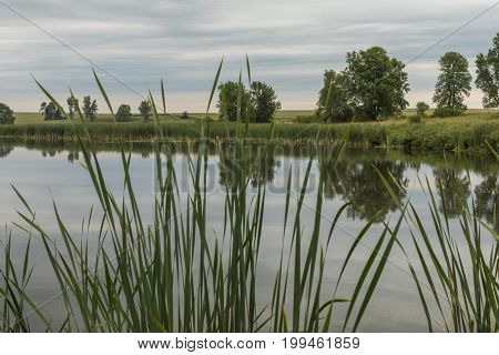 Mound Lake - A small lake surrounded by cattails.