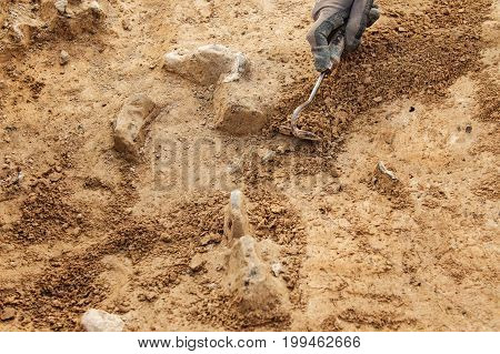 Archeological Tools, Archeologist Working On Site,  Hand And Tool.