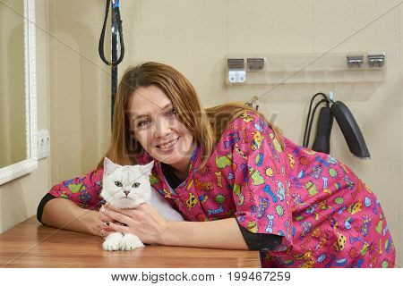 Smiling woman with a cat. Happy female and pet indoors. Friendship of humans and animals.