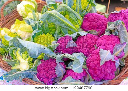 Fresh Organic Purple Cauliflower At The Local Farmers' Market.