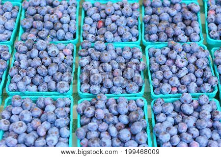 Organically Grown Blueberries For Sale At The Downtown Farmers' Market.