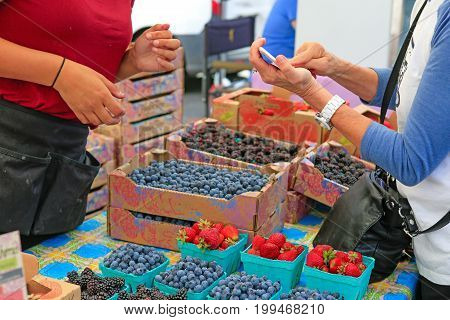 Organically Grown Strawberries, Blackberries And Blueberries For Sale At The Downtown Farmers' Marke