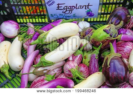 Fresh Organic Eggplants At The Local Farmers' Market.