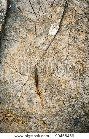 background or texture detail limestone rock with grooves