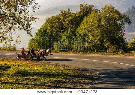 Gypsy Family Ride A Horse Cart On Serpentine