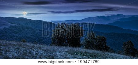 beautiful panorama of Carpathian mountains in early autumn weather. few beech tree tops behind the grassy of a ridge under sky with clouds at night in full moon light