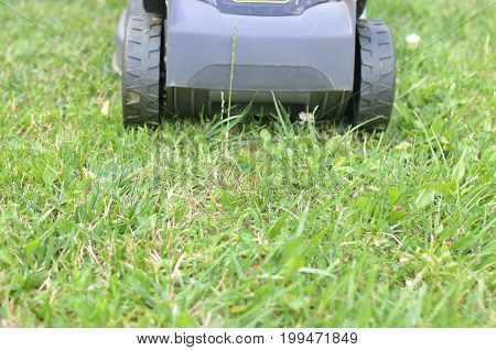 Lawn Mower In Action