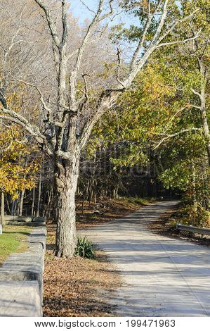Dirt road bends past secluded cemetery in Foster Rhode Island