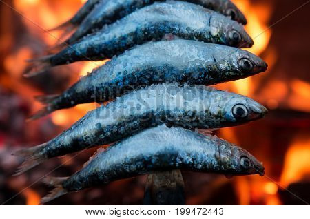 Sardine skewer (espeto de sardinas), traditional spanish dish from the south of Spain, Málaga and Granada coast
