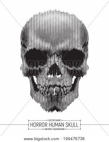 Vector Human Horror Skull Art Illustration Isolated on White Background
