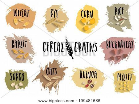 Vector set of cereal emblems with black handwritten lettering and hand-drawn stylized grains. For packing groats advertising healthy food.