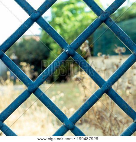Old Window Iron Bars