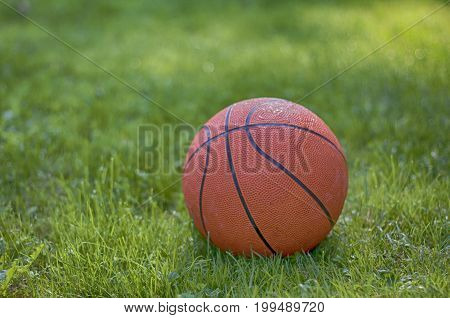 a basketball on grass. A close up