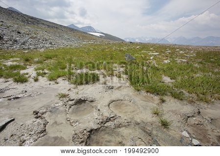 Mountain Altai. Landscape With Puddle And Traces Of Hooves