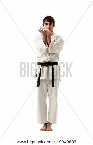 Karate Male Fighter Y
