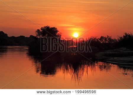 Sunset with silhouetted trees reflected in the water, Zambezi river, Namibia
