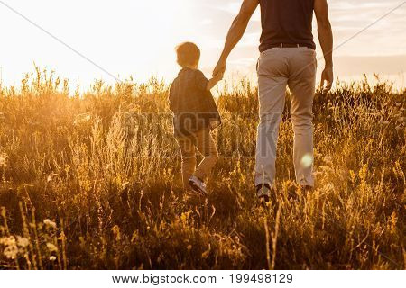 Cheerful boy is holding hand of his dad while enjoying walk on meadow. Focus on their back