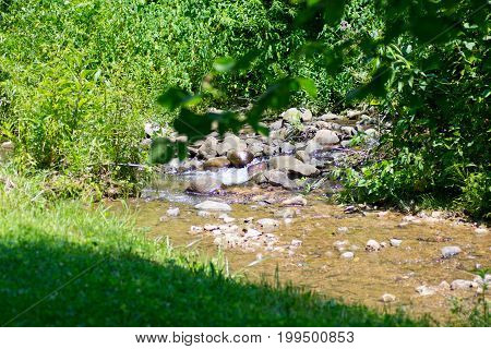 Small Country Stream with Babbling Water Running
