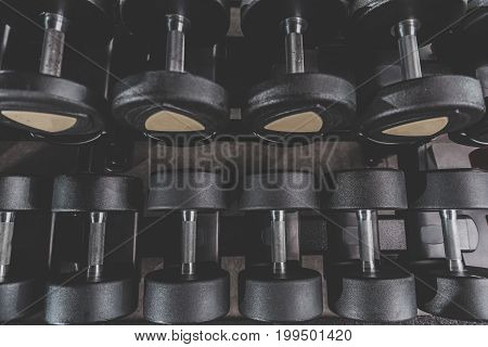 Top view hard iron dumbbells locating in row on shelves. They are used for exercising in fitness center