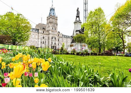 Quebec City Canada - May 29 2017: Colorful tulip flowers in summer by Parliament park with statue