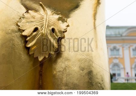 Fig leaf covering the genitalia on the male statue