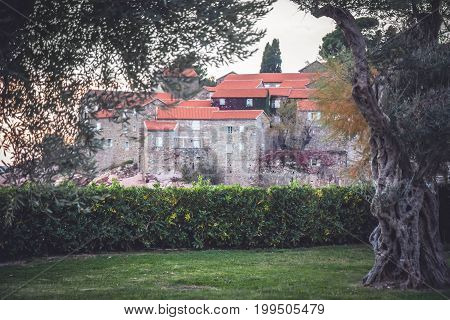 City park with green hedge and old trees in front of old town Sveti Stefan in European country Montenegro