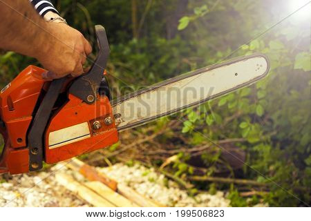 Sawing wood with a chainsaw. carpenter working