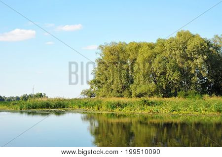 Green Landscape With River And Tree