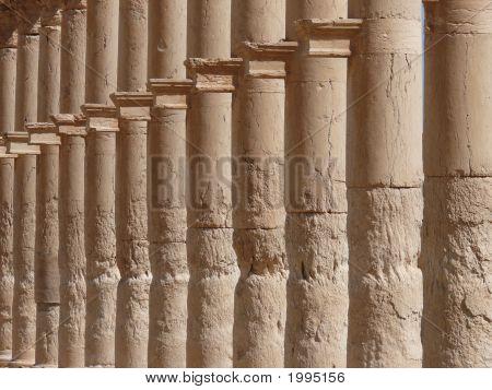 Ancient Columns Close Up, Great Colonnade, Palmyra, Syria