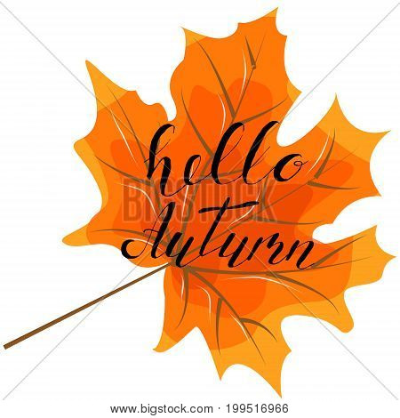 Autumn hello hand lettering quotes.Modern motivation calligraphy typography for the poster invitations greeting cards.Vector design lettering