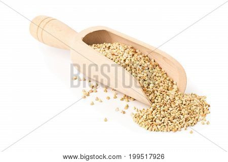 Raw natural uncooked buckwheat seed kernels in wooden scoop over white background