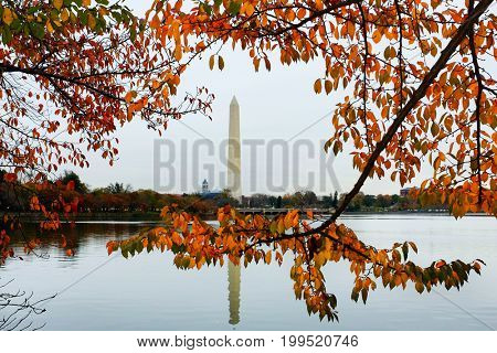 Autumn in Washington DC - Washington Monument as seen from Tidal Basin