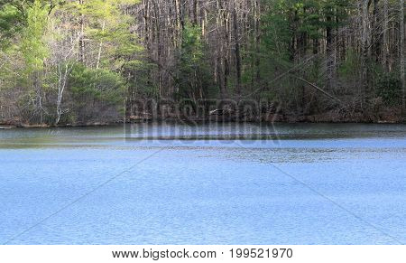 Lake in early spring time with light breeze