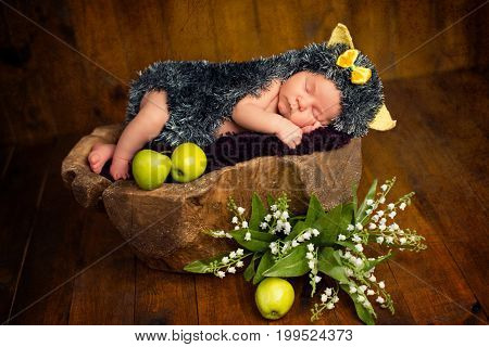 Funny newborn little baby girl in a costume of hedgehog sleeping sweetly on the stump.