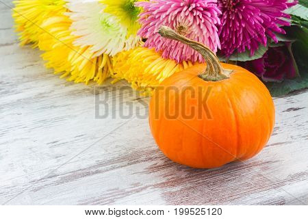 pile of orange pumpkins with fall mum flowers on white wooden table