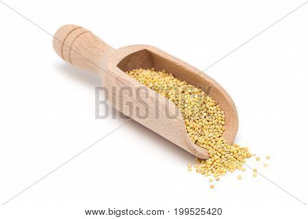 Organic millet groats in a wooden scoop side view isolated