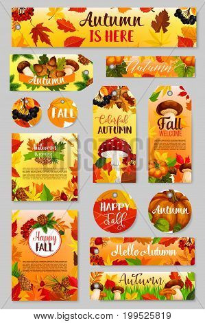 Autumn tag set of fall harvest pumpkin, mushroom, leaf. Orange maple foliage, pumpkin veggies, chanterelle, amanita and cep mushroom, acorn, briar and rowan berry, pine cone for autumn holiday design