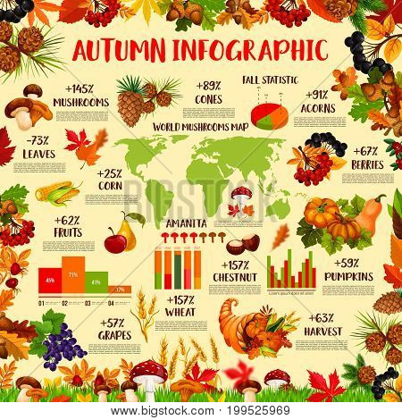 Autumn season nature infographic template. Fall harvest statistic graph, chart and world map with autumn leaf, pumpkin vegetable, apple fruit, mushroom, corn, grapes, forest berry and acorn icon