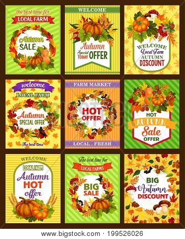 Autumn sale retro poster set. Fall season nature badge of autumn leaf frame with harvest pumpkin vegetable and wheat, forest mushroom, acorn and berry, pine cone and ribbon banner for retail design